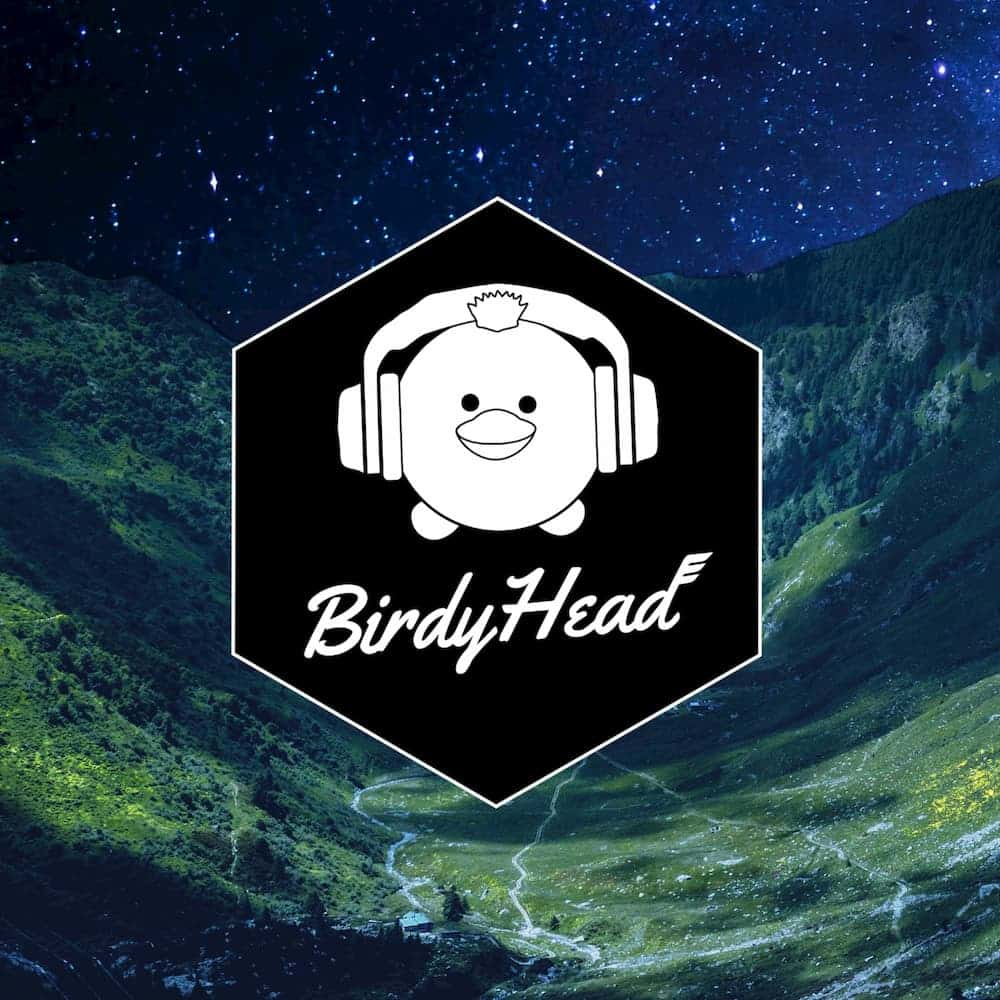 BirdyHead - Muumimusiikkia39 cover art