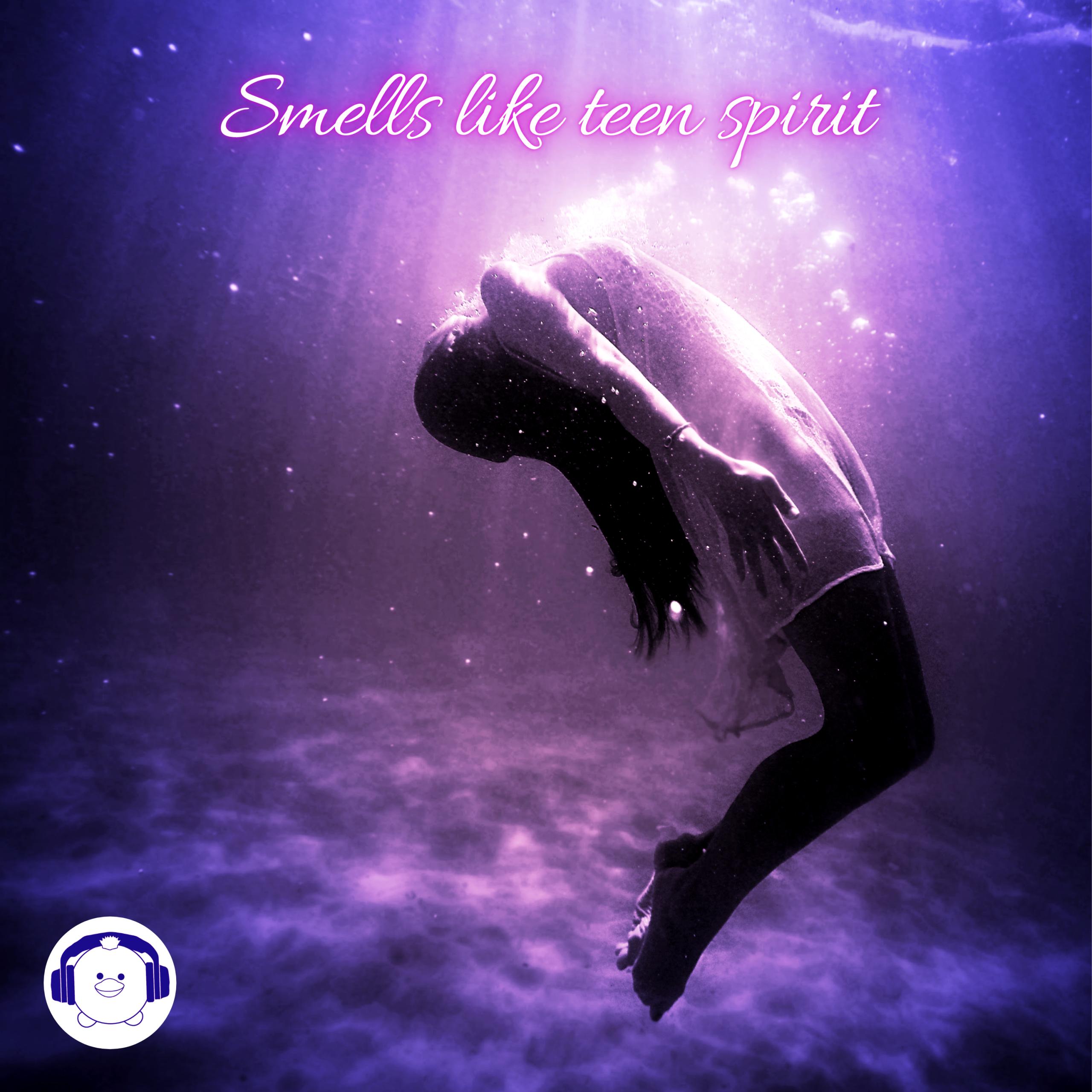 BirdyHead - Smells like teen spirit cover art